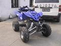 NEW 250CC CVT SPORT ATV