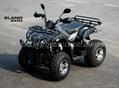 NEW 200CC  CVT ELAND STYLE ATV/QAUD