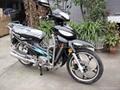 NEW 50CC EEC CUB MOTORCYCLE