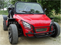 NEW 850CC/1100CC CHERY ENGINE BUGGY/GO