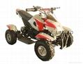 NEW  ELECTRIC ATV /QUAD