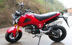 New 110cc/125cc motorcycle/motorbike