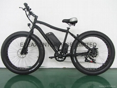 NEW ELECTRIC SNOW BICYCLE/BIKE