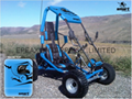 NEW MINI KID GO KART/BUGGY