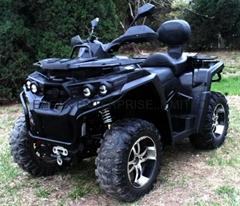 NEW 800CC 2/4WD ATV/QUAD (EP800ST-3)