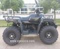 NEW 3KW ELECTRIC ATV/QUAD (EP-ECATV02)