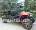 250CC UTILITY VEHICLE/FARM UTV