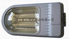 低頻無極燈路燈專用燈具