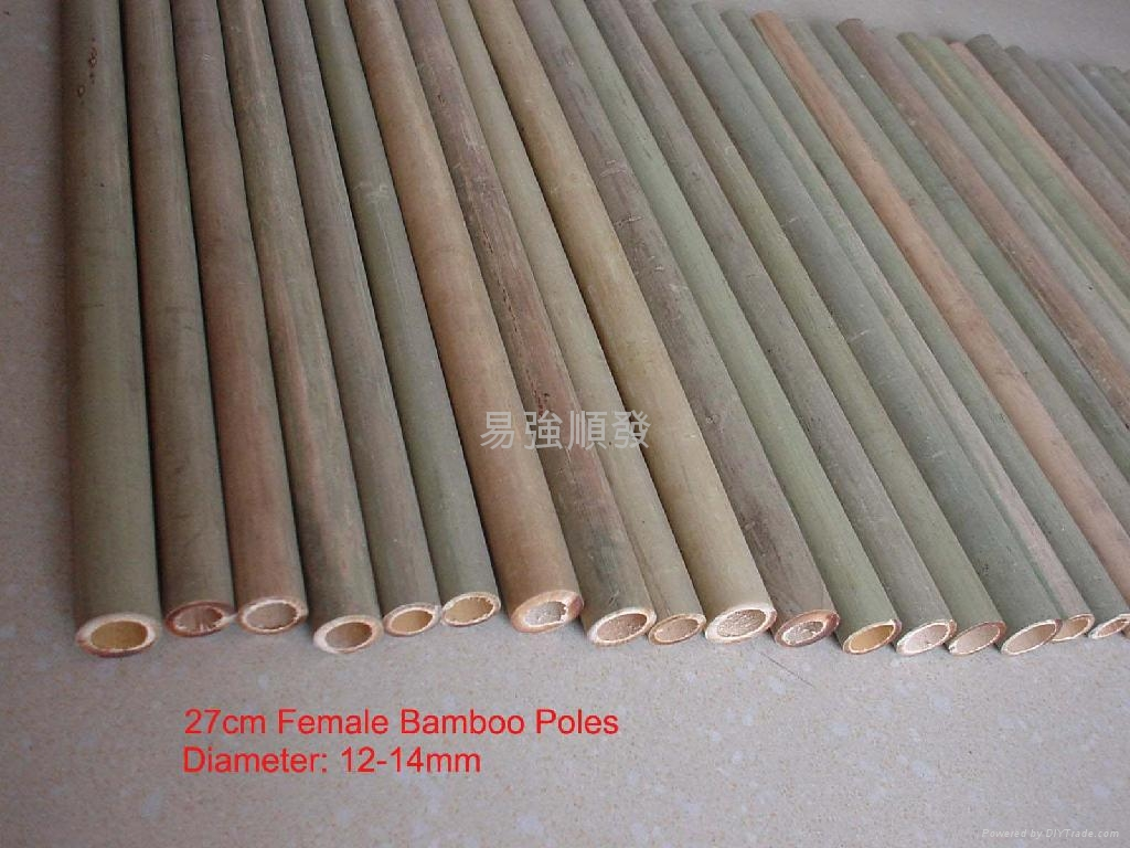 Bamboo Poles Bamboo Sticks 001 China Manufacturer