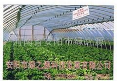 安陽市綠之源科技發展有限公司