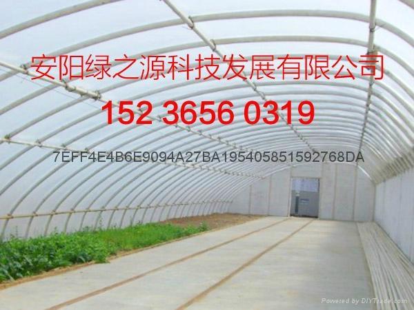 溫室工程建設 2