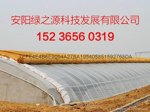 溫室工程建設 3