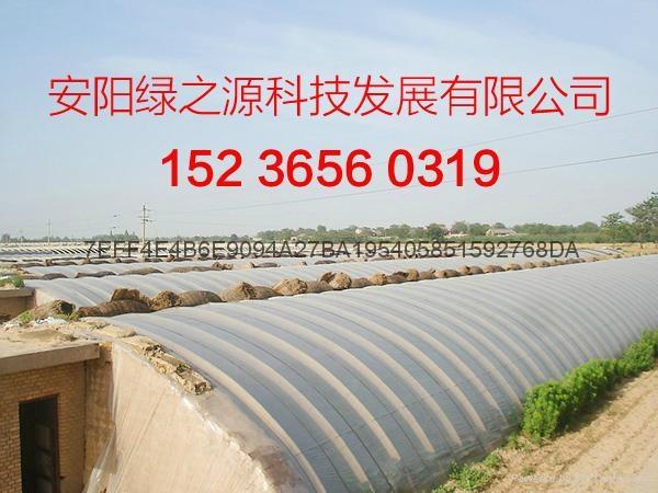 溫室工程建設 4