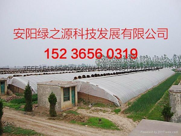 溫室工程建設 5