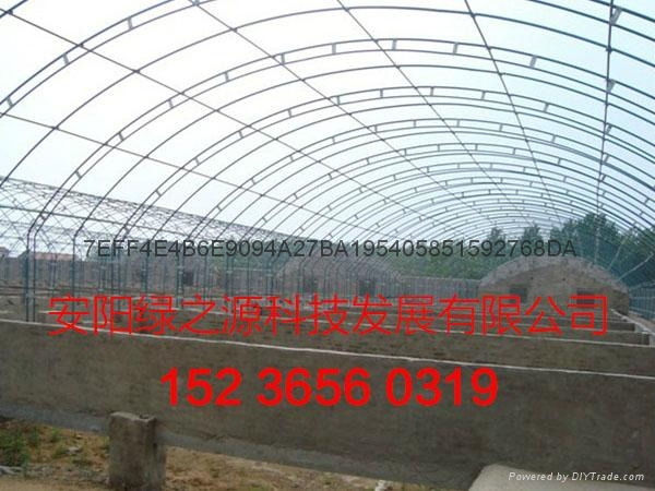 安陽綠之源養殖大棚建設 1