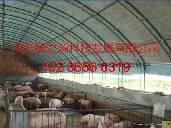 安陽綠之源養殖大棚建設 2
