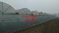 全國溫室大棚製作設計維修 3