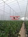 全國溫室大棚製作設計維修 4