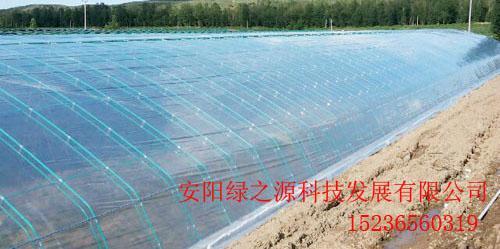 建設日光溫室的優點 2