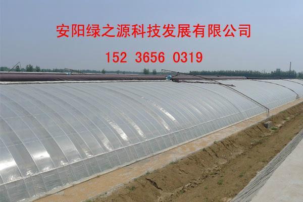 建設日光溫室的優點 3