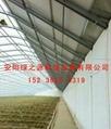 建设日光温室的优点