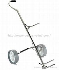 push pull rental carts