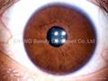 2014 NEW 5.0 MP 4 LED/2 LED USB Eye IRISCOPE Iridology camera PRO software