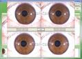 全新500万像素USB电脑型左/右灯自动分析虹膜检测仪 18