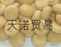 双孢菇罐头