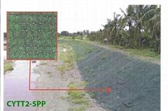 Erosion Control-Turf Reinforcement Blanket