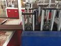 WPC BRUSHING machine