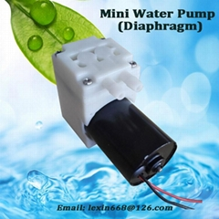Diaphragm DC brushless,300mbar Lower noise Mini Water Pump with New Technology