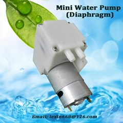 High-quality small water pump with 35 kpa, DC or BLDC with New Technology