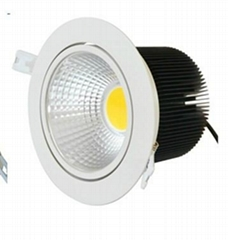 20W COB LED adjustable down light
