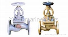 Marine globe valve