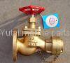 Marine bronze fire valves