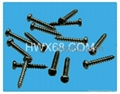 工厂直销小螺丝,非标准螺丝,定位螺丝,注塑螺丝 3