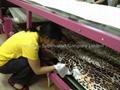 毯帶式油加溫印花機 2