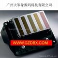 Orginal Epson print Head for DX4/DX5/DX6/DX7