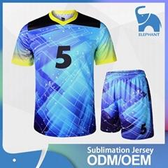 Best quality sports wear type customize jersey football soccer