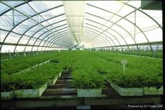 大棚種植灌溉控制系統