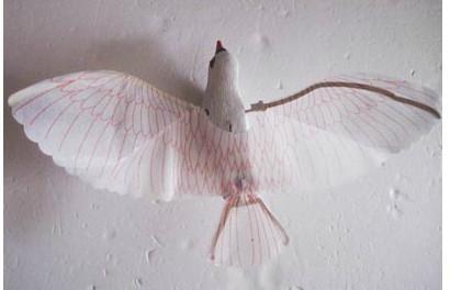 玩具电动飞鹰 3