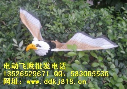玩具电动飞鹰 4
