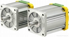 TPG BRUSHLESS DC MOTOR
