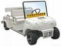 TPG电动车专用无刷马达