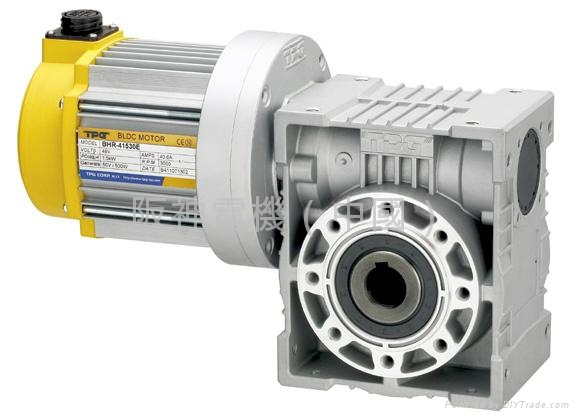 tpg brushless hollow shaft worm gear motor bwm type