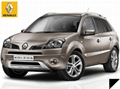 2009-2010 RENAULT KOLEOS door handle cover