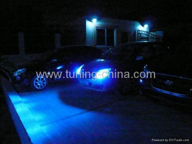 HID Xenon Bulb (Blue) 1