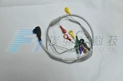 迪姆動態10導聯線