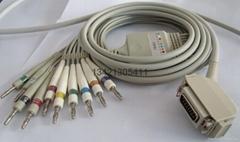 海力格一體十二導聯線
